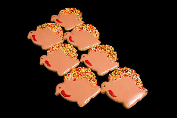 Hand Decorated Iced Turkey Cut-Out Cookie
